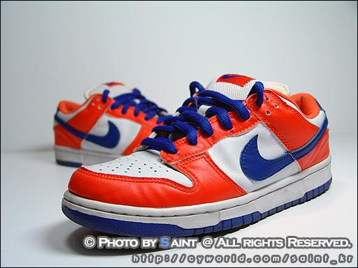 Nike Blue Orange Shoe
