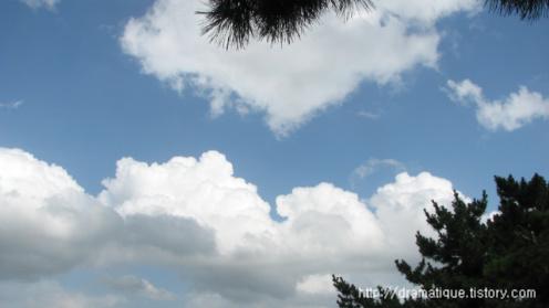 찜통더위 하늘