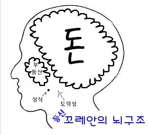 한국인의 뇌구조