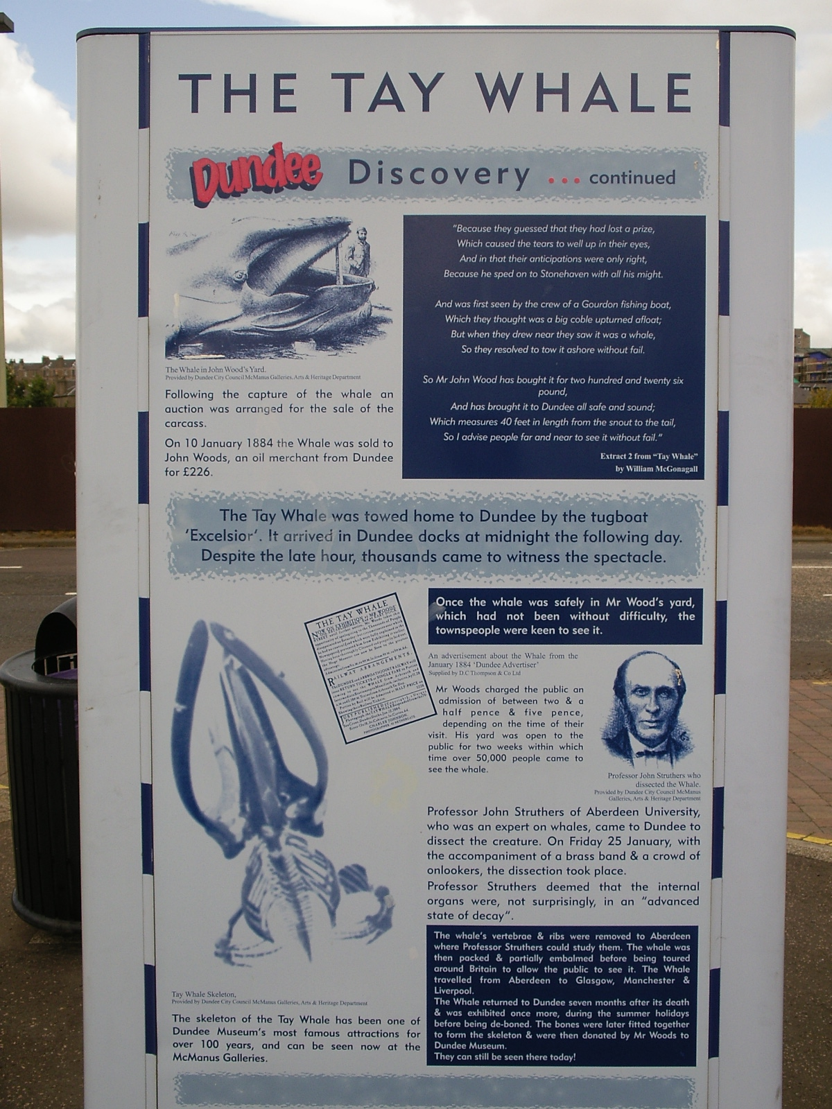 History of Dundee - the Tay Whale
