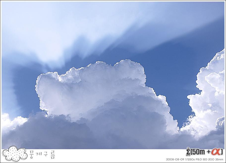 하늘의 변신은 무죄! 그리고 감동!